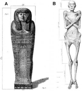 Dr. Granville&#039;s original drawings of the mummy and sarcophagus lid