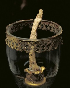 Galileo's middle finger, currently on display in Florence's Museum of the History of Science