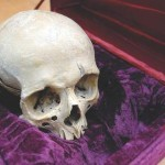 Revolutionary War skull in its burial casket