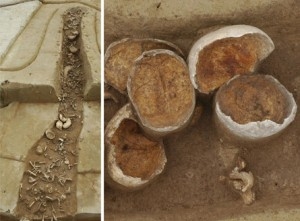Burial bit with dismembered bones, left, partial skulls, right