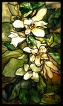 Magnolia window