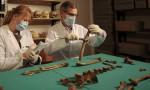 Scientists examine bones of Queen Eadgyth