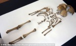 Infant skeleton found at Yewden villa