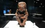 The Detmold Child, Peruvian mummy, 4504-4457 B.C.