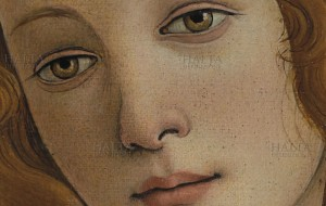 Boticelli's Venus totally wants you