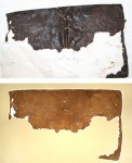 Folio 28v 31r before and after drying