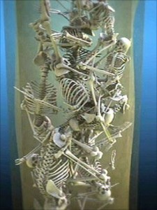 Reconstruction of tightly packed skeletons found in Norwich well