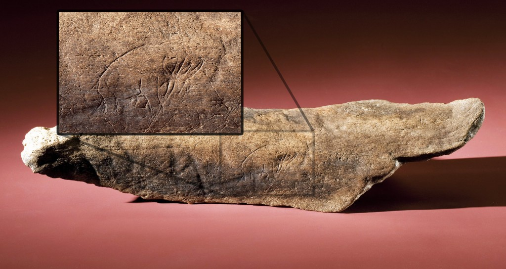 Mastodon bone with inscription detail blow out