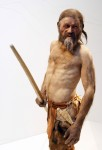Reconstruction of Otzi the Iceman