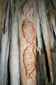 Nerja cave paintings of seals, about 42,000 years old