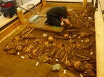 Technician Heiko Heilmann carefully excavates top layer of bodies