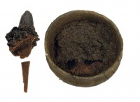 Nettle stew bowl, spoon removed with stew still attached