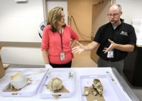 Dr. Jan Garavaglia and Dr. John Schultz discuss the two skulls discovered during Winter Garden, Florida pool construction