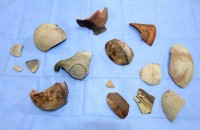 Ancient Peruvian pottery shards found during Winter Garden pool construction