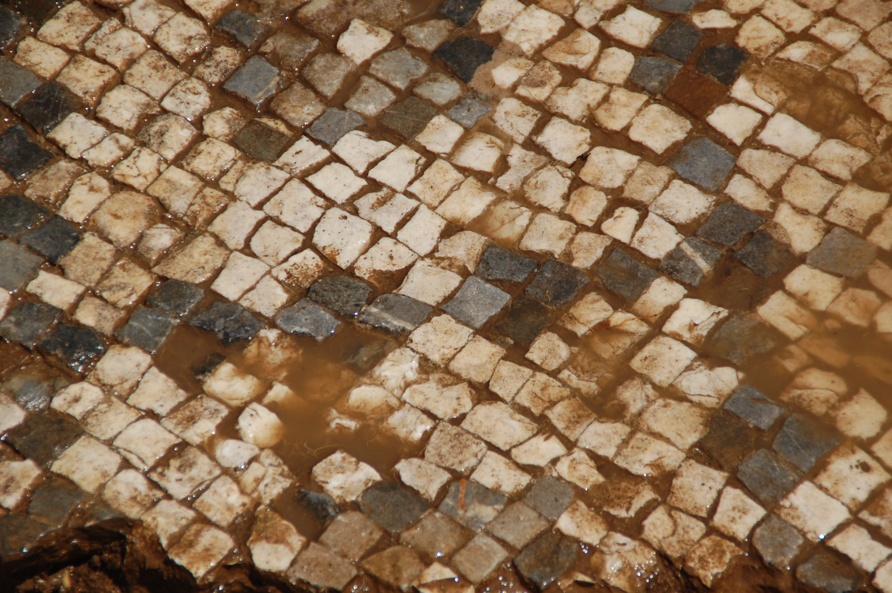 Roman floor tiles