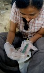 Archaeologist Griselda Pérez holds jade artifact from tomb