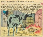 It was Krypto the Superdog in disguise as a supercow who really did it