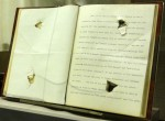 Speech with bullet hole, now bound and on display at the Theodore Roosevelt Birthplace museum