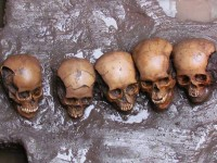 Five pierced skulls found under sacrifice stone