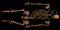 Richard III's skeleton laid out in the lab
