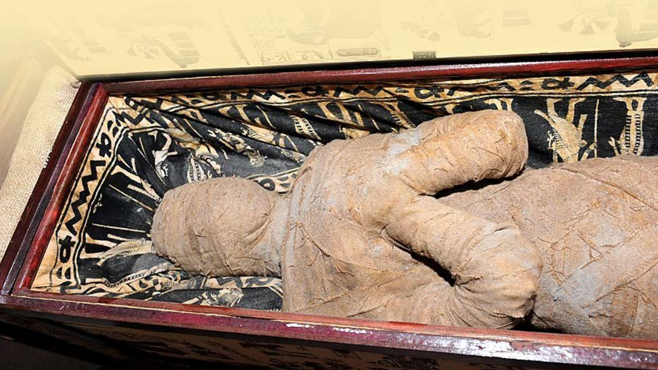 The History Blog » Blog Archive » 10-year-old finds mummy ...