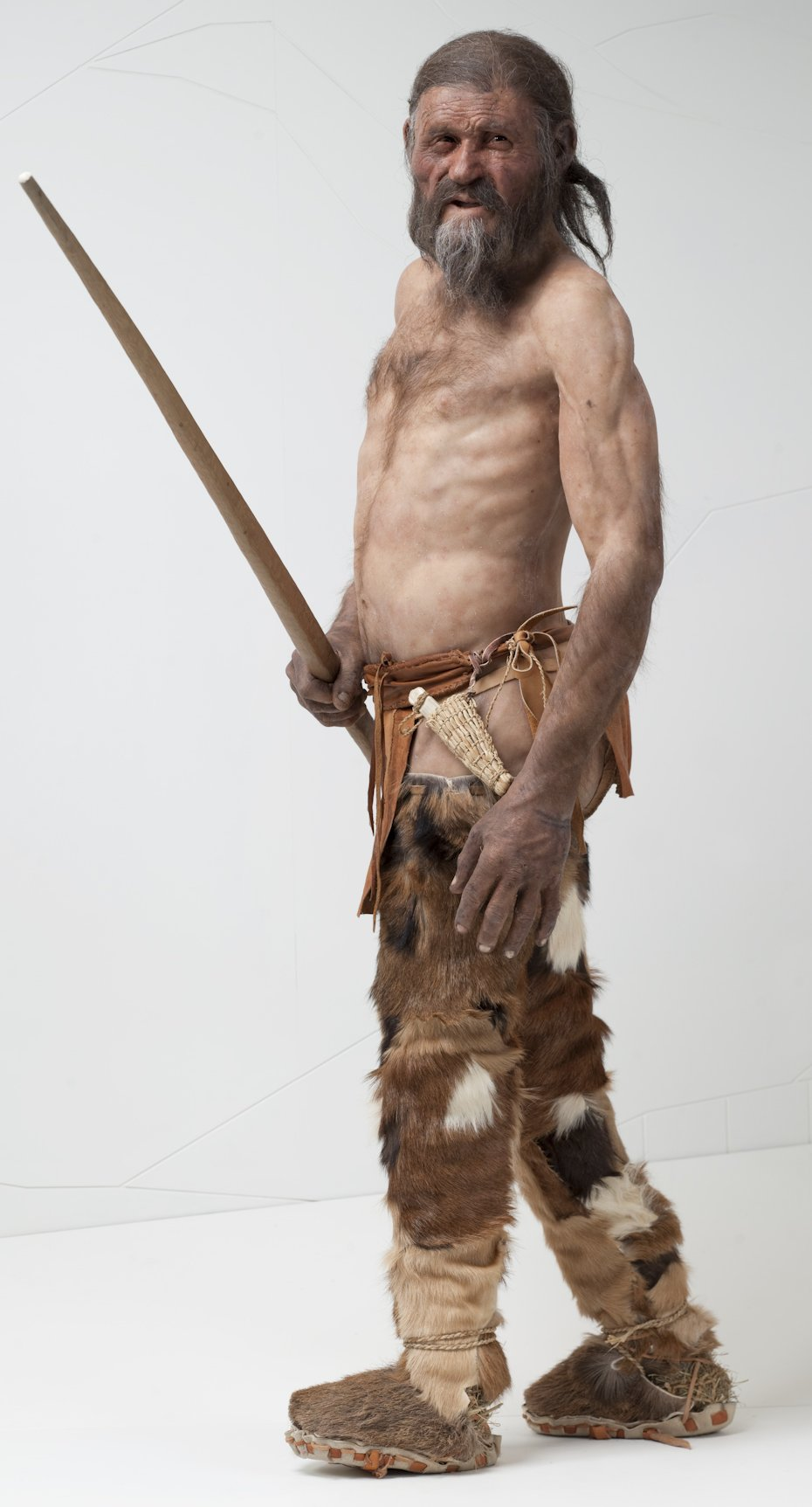 The History Blog 187 Blog Archive 187 Otzi Has Living Relatives After All