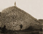Pile of bison skulls waiting to be ground into fertilizer, mid-1870s