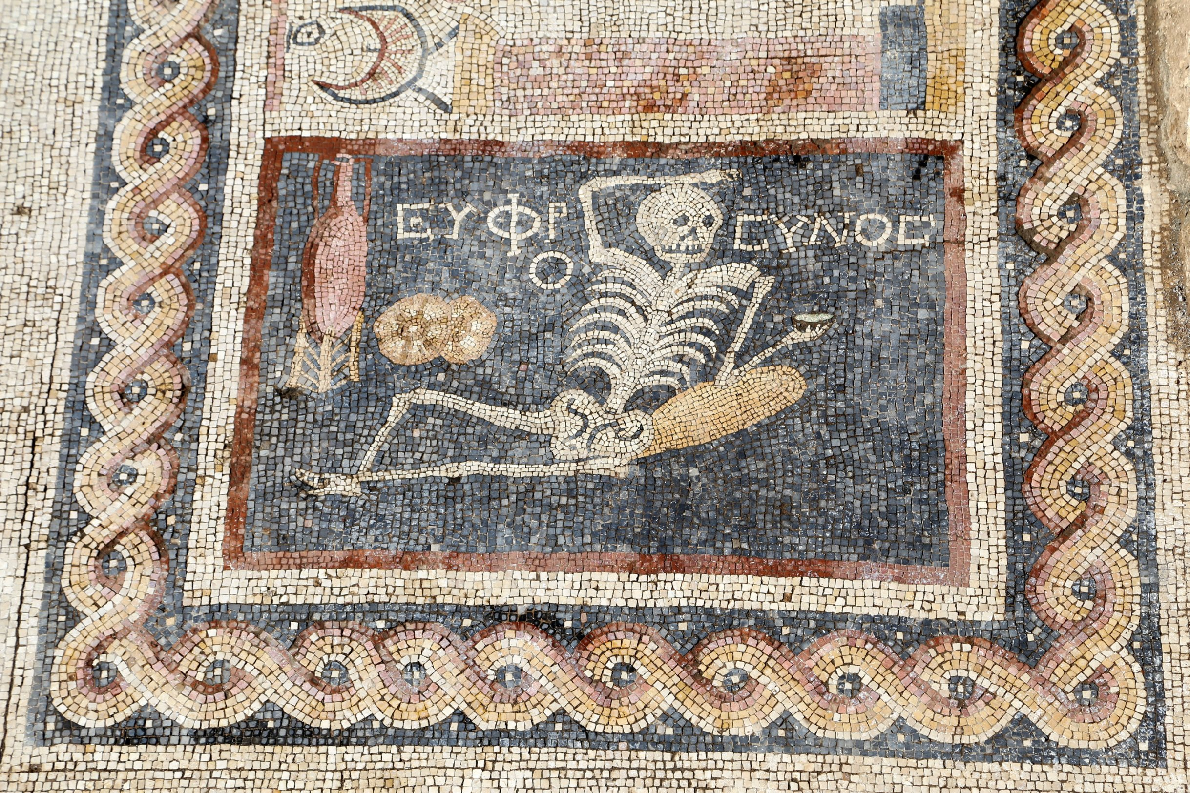 The history blog blog archive ancient skeleton mosaic for Mosaico romano