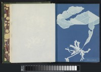"Anna Atkins, ""Photographs of British Algae."" 1843-1853, open. Purchased with the support of BankGiro lottery, the W. Cordia Family/Rijksmuseum Fund and the Paul Huf Fund/Rijksmuseum Fund."