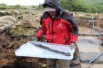 Dr Andrew Birley with sword. Photo courtesy the Vindolanda Trust.