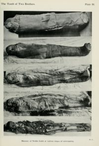 Mummy of Nekht-Ankh at various stages of unwrapping, Plate 10, 'The Tomb of Two Brothers', by Margaret Alice Murray et al, 1908.