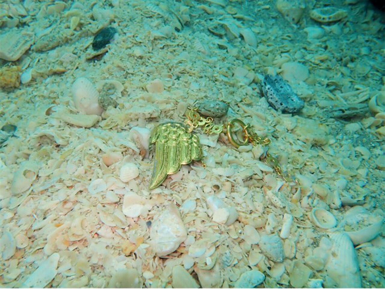 Gold pelican's wing found in shipwreck