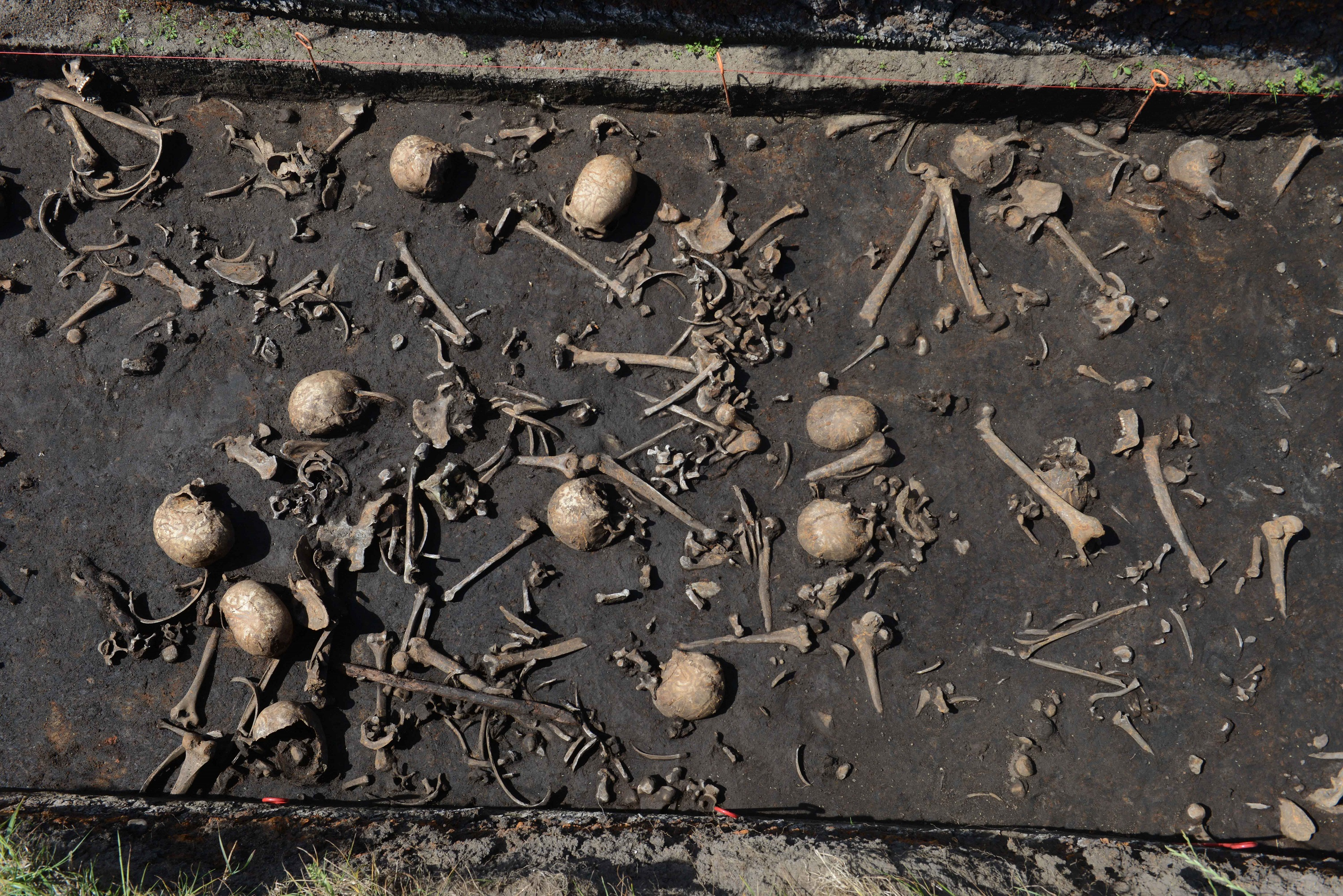 """Europe's """"oldest known battle"""" may have been massacre instead"""